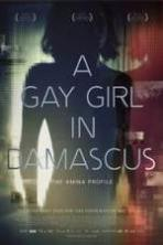 A Gay Girl in Damascus: The Amina Profile ( 2015 )