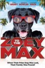 Zoey to the Max ( 2015 )