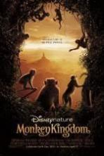Monkey Kingdom ( 2015 )