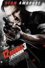 12 Rounds 3: Lockdown ( 2015 )