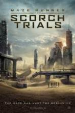 Maze Runner: The Scorch Trials ( 2015 )
