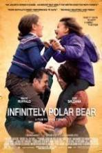 Infinitely Polar Bear ( 2014 )