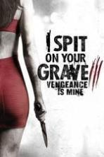 I Spit on Your Grave: Vengeance is Mine ( 2015 )