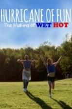 Hurricane of Fun: The Making of Wet Hot ( 2015 )