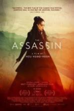 The Assassin ( 2015 )