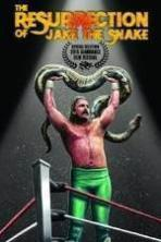 The Resurrection of Jake The Snake Roberts ( 2015 )