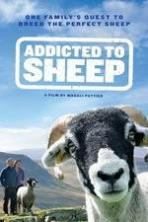 Addicted to Sheep (2015)