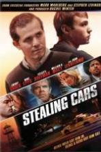 Stealing Cars ( 2016 )