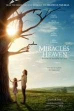 Miracles from Heaven ( 2016 )