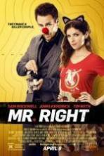 Mr Right ( 2016 )