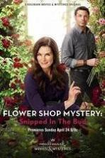 Flower Shop Mystery: Snipped in the Bud ( 2016 )