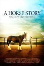 A Horse Story ( 2016 )