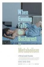 When Evening Falls on Bucharest or Metabolism ( 2013 )