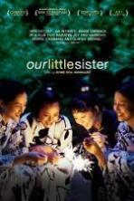 Our Little Sister ( 2015 )