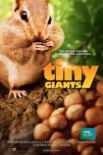 Tiny Giants 3D ( 2014 )