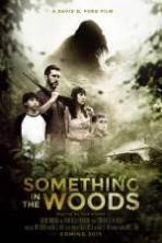 Something in the Woods (2016)