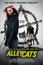 Alleycats_2016