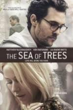 The Sea of Trees ( 2015 )