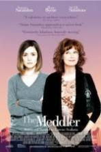 The Meddler ( 2016 )