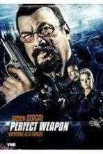 The Perfect Weapon ( 2016 )