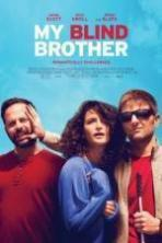 My Blind Brother ( 2016 )