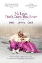 My Love Dont Cross That River (2014)