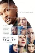 Collateral Beauty ( 2016 )