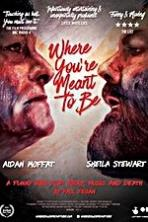 Where Youre Meant to Be (2016)
