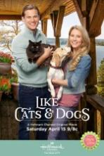 Like Cats and Dogs (2017)