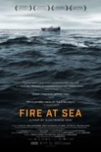 Fire at Sea ( 2016 )