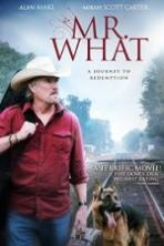 Mr What ( 2015 )