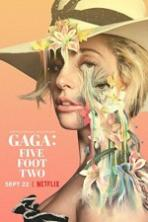 Gaga Five Foot Two Full Movie Watch Online Free Download