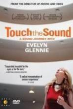 Touch the Sound: A Sound Journey with Evelyn Glennie ( 2004 )
